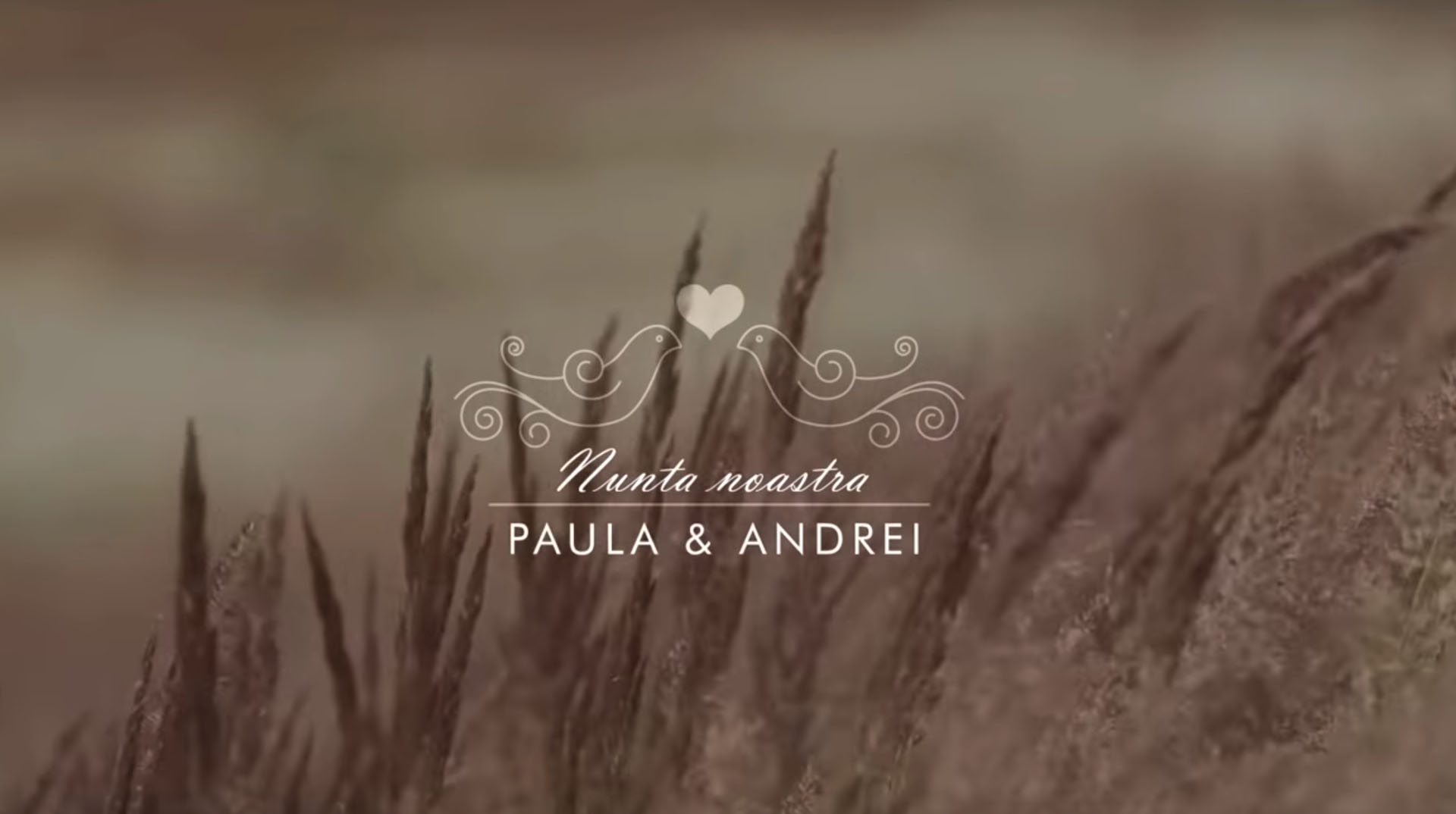 clip nunta Codlea